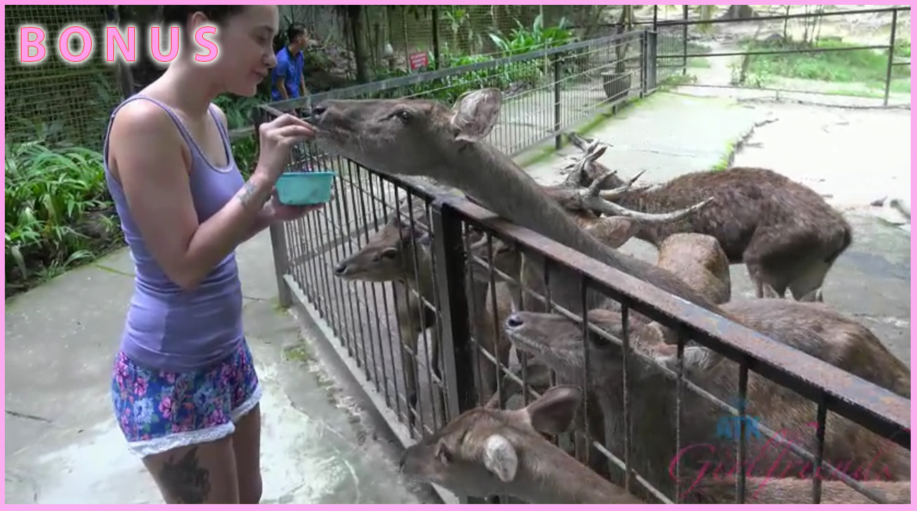 Gia takes another crack at feeding the monkeys, and other animals!